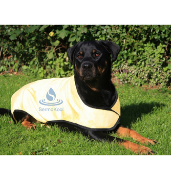 Evaporative Dog Cooling Coat,cooling vest