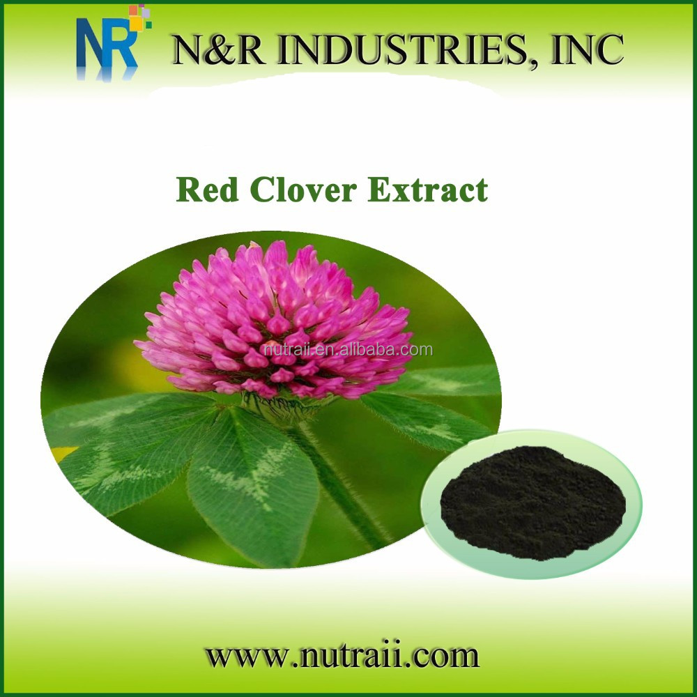 100% natural red clover extraction/p.e. powder