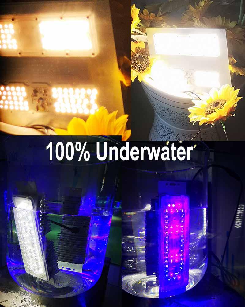 2020 novo Lançamento IP67 À Prova D' Água Full Spectrum LED Grow Painel de Luz 200W com 5 anos de garantia