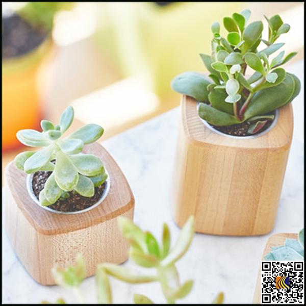 Maceta para la venta de madera estilo cemento macetas de - Macetas para interior ...