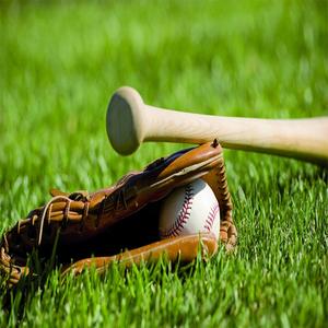 lowes outdoor carpet grass carpet that looks like grass for baseball
