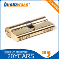 Double profile mortise cylinder lock for glass door