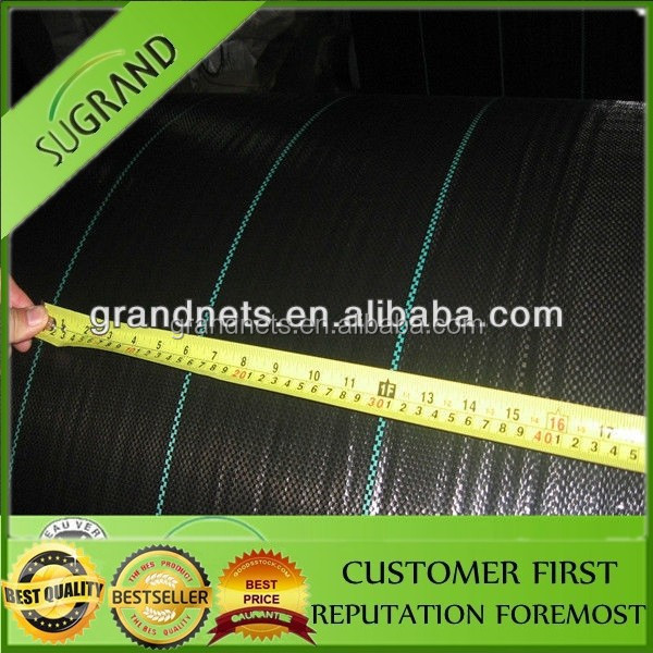 My factory produce black PP & PE plastic ground cover mesh