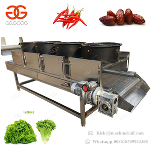 Trade Assurance Cool Air Leaf Lettuce Mushroom Yam Fish Meat Chili Dryer Dewatering Equipment Fruit and Vegetable Drying Machine
