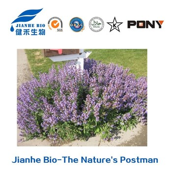 Natural Triterpenoid Rosemary Extract Ursolic Acid Reducing Phlegm ...