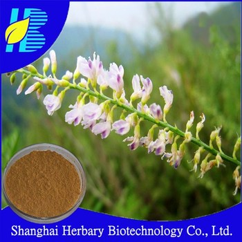 HOT product Melilotus extract 5%Coumarin , Melilotus Suavcolen ,Yellow Sweet Clover