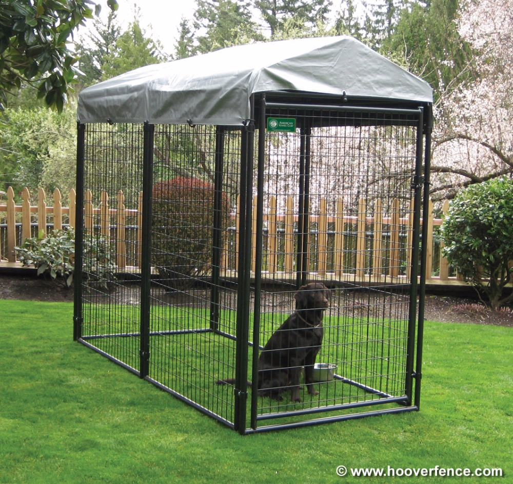 Wholesale Large outdoor Black dog cages / welded wire dog kennel / pet enclosure