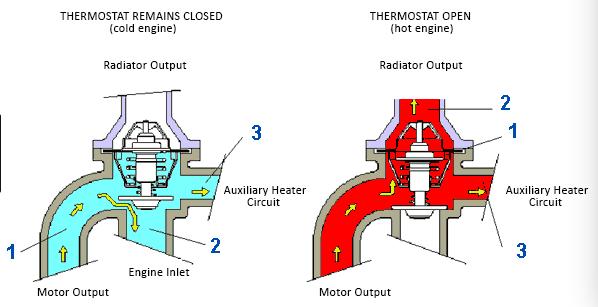 114095090 113095090 Skoda Car Engine Parts Thermostat