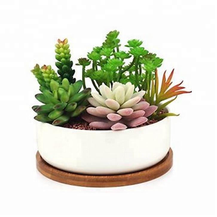 Decorative White Small Ceramic Cactus Plant Clay Flower Pot Price - Buy  Clay Flower Pot Price,Mini White Ceramic Flower Pots,White Ceramic Indoor