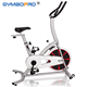 Professional Indoor Cycling Bike With LCD Monitor and 13KG flywheel