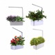 Smart Hydroponics Indoor Smart Garden flower pot with LED Growing Light