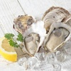 Good Quality frozen Half Shell Oyster lived oyster for sale