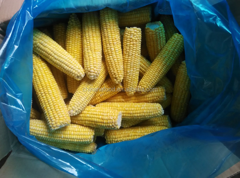 IQF frozen sweet corn cob with natural length