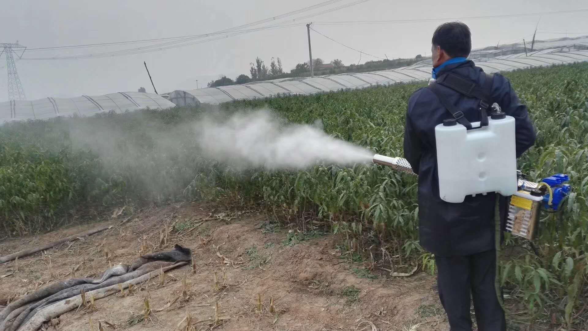 การเกษตร thermal fogger pesticide sprayer fogging machine