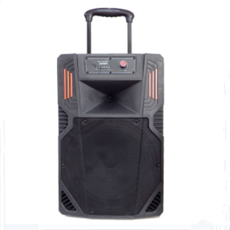 Outdoor Pro Active Trolley 15 Inch Rechargeable Portable Speaker With Battery