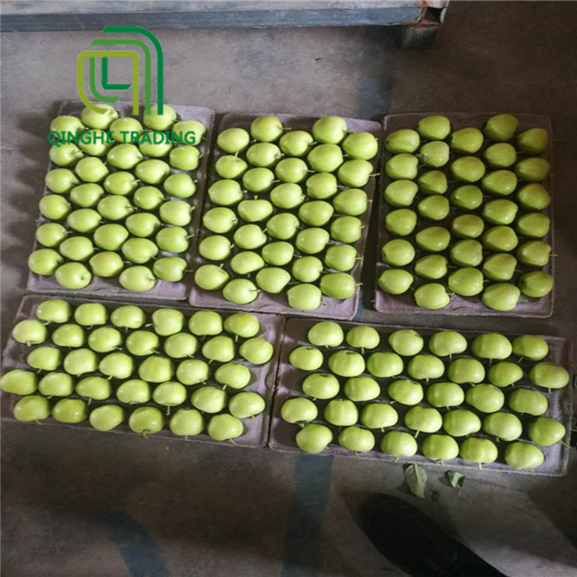 Hot selling bulk fresh fruit green gala apples with great price
