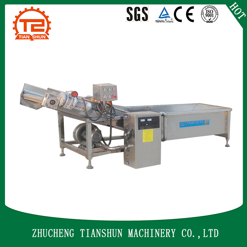 ozone washing machine in vegetable processing and washing use TSXC-30