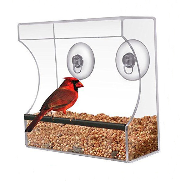 Acrylic Window Clear Viewing Bird Feeder Table Seed Hanging Suction Perspex