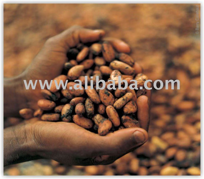 Agricultural Commodities & Solid Minirals