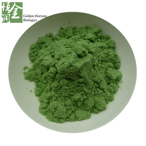Spinach organic extract powder Pure natural manufacturer supply Spinach powder
