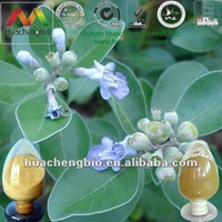 ISO&Kosher 2%-5% Vitexin/Agnuside Vitex Agnus Castus Extract