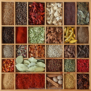 Wholesale different kinds of dry herb spices