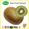 Free sample Kiwi Fruit Extract/Actinidia Kiwi Extract/Actinidia Chinensis Fuit Powder
