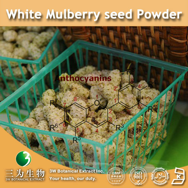 3W supply-- Extract of White Mulberry (100% Natural and Healthy)