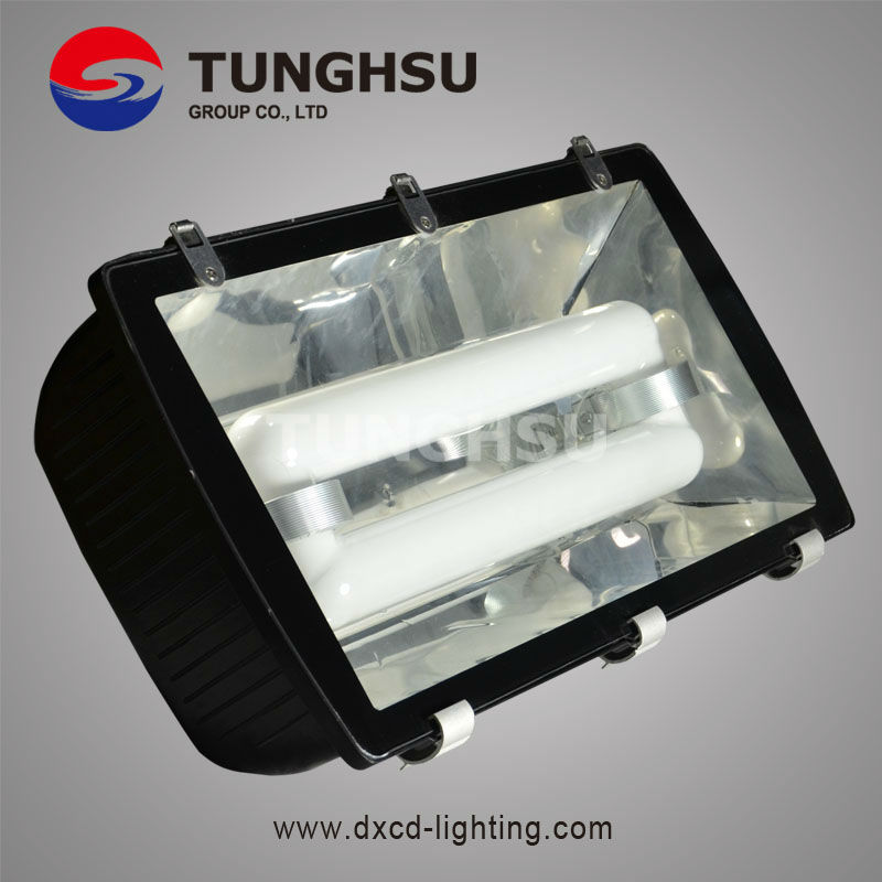 Induction Lamp For Tunnel Light (edl-sd002d)