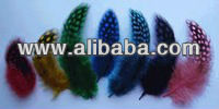 grizzly rooster feathers,roster feathers,feather extensions,
