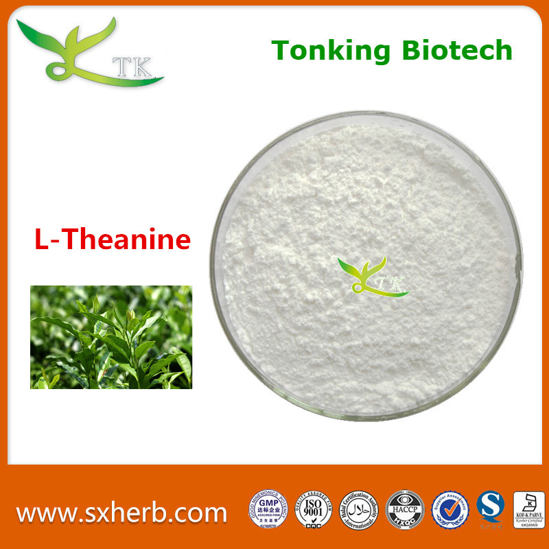 Best Price Supply l theanine Powder
