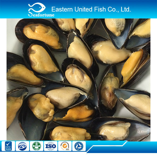 wild new arrival oyster meat