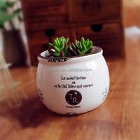 Small white glazed pottery planter 4 inch flower pot ceramic