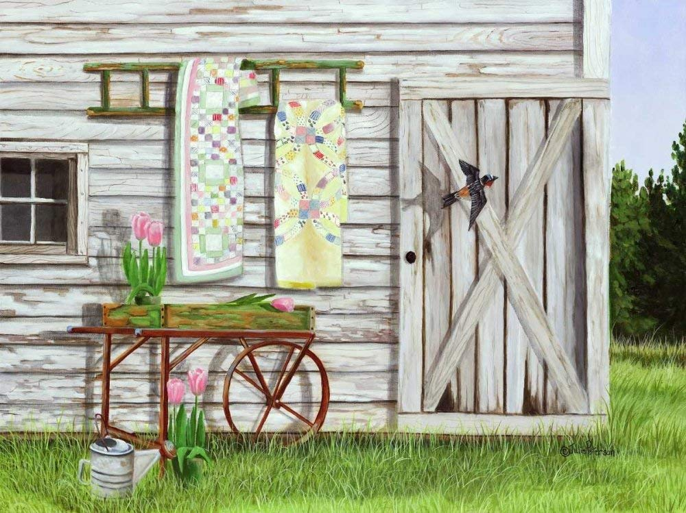 """Garden Shed and Swallow by Julie Peterson - 8"""" x 10"""" Giclee Canvas Art Print"""
