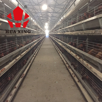 uae high quality egg collecting system poultry farm automatic hot dip galvanized chicken layers cage