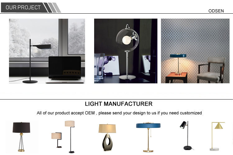 Stainless steel chassis iron metal lamp floor led