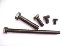 stainless steel hex bolt with lower prices, bolt and washer nuts made in china