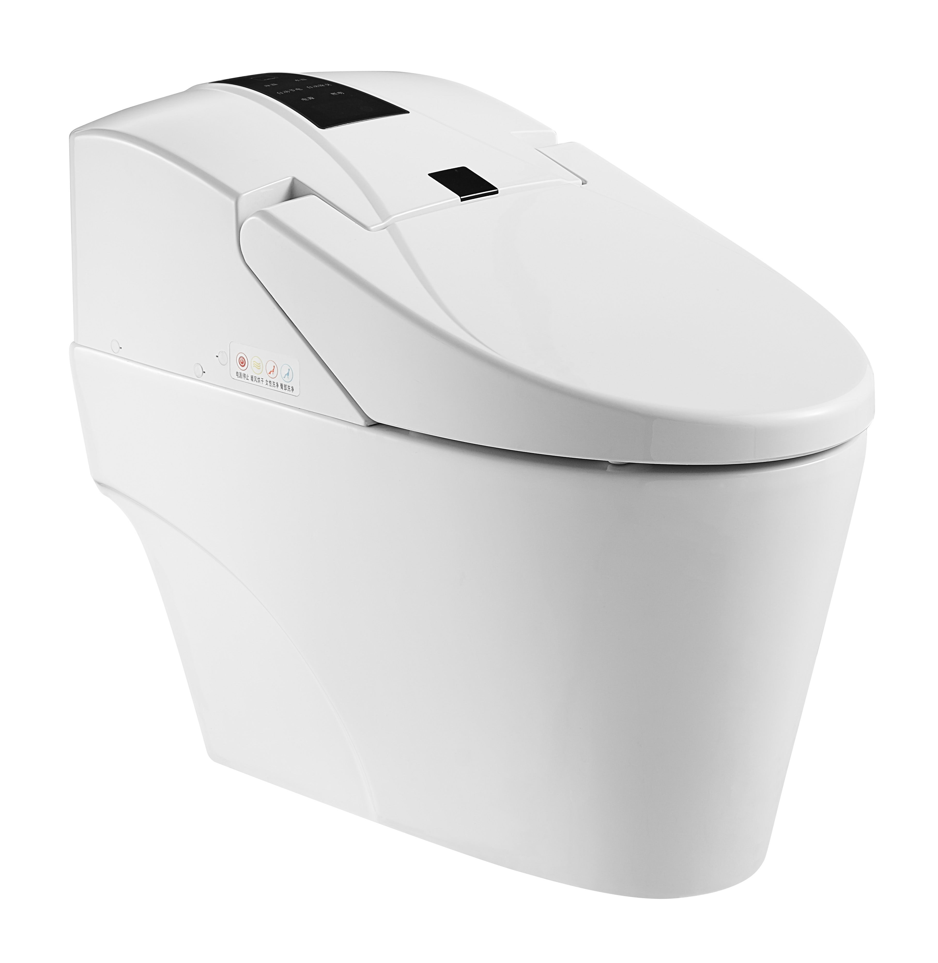 Hygienic Warm Water Cleaning Electronic WC Bidet Toilet ZJS-05
