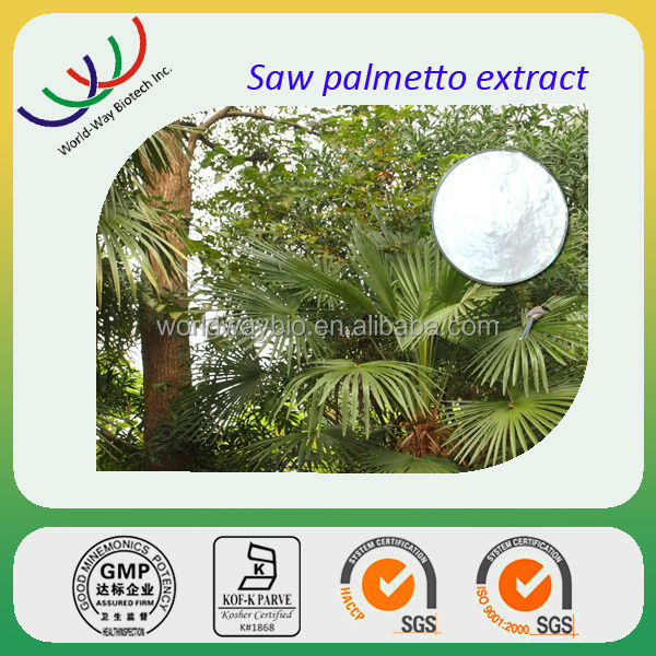 Free sample saw palmetto extract,Lower cholesterol 25%~45% fatty acid,factory supply natural saw palmetto extract