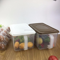Plastic Packaging Collapsible Eggs Storage Containers/fridge plastic food storage box with handle