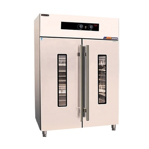 Kitchen sterilizing equipment Foaming series 125 Celsius Light wave hot air foaming double door disinfection cabinet