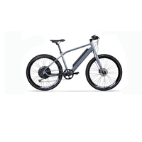 China import adult aluminium electric bike