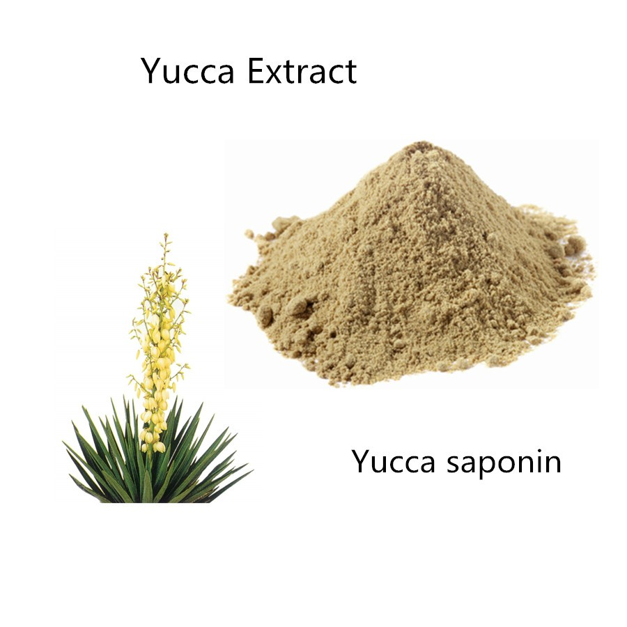 Yucca schidigera extract poeder active ingredient Sarsaponin Specification 30%, 60%, 10:1, 20:1