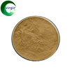 Supply Wormwood Extract Powder Artemisia Absinthium Absinthe Herb Extract