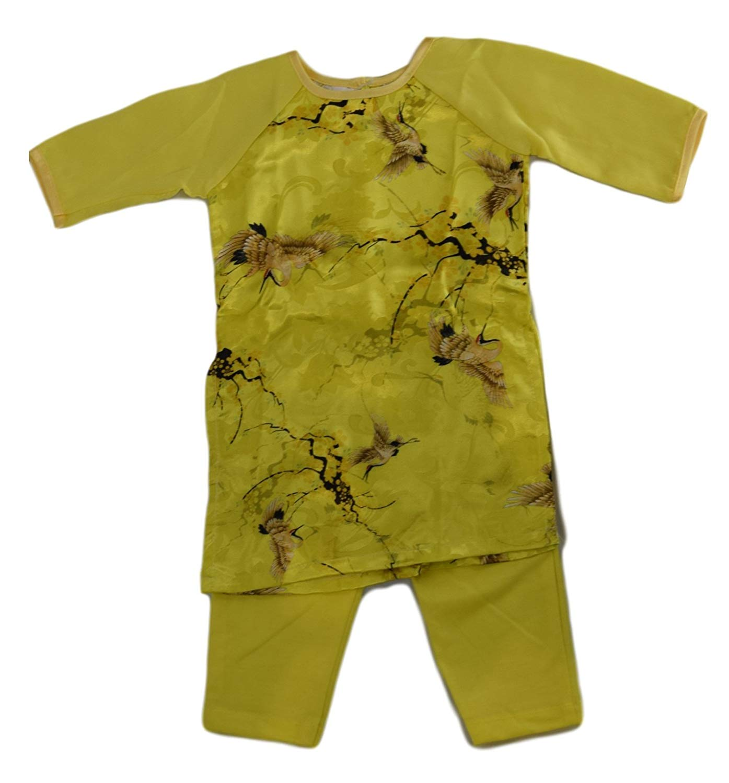 Buy Ao Dai Viet Nam Viet Nam Traditional Long Dress Ao Dai