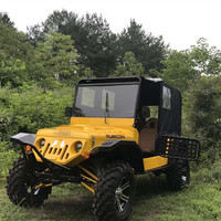 China made 3000w electric mini jeep willys for sale