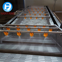 Factory Price Fruit Leafy Vegetable Washing Machine and washing Line