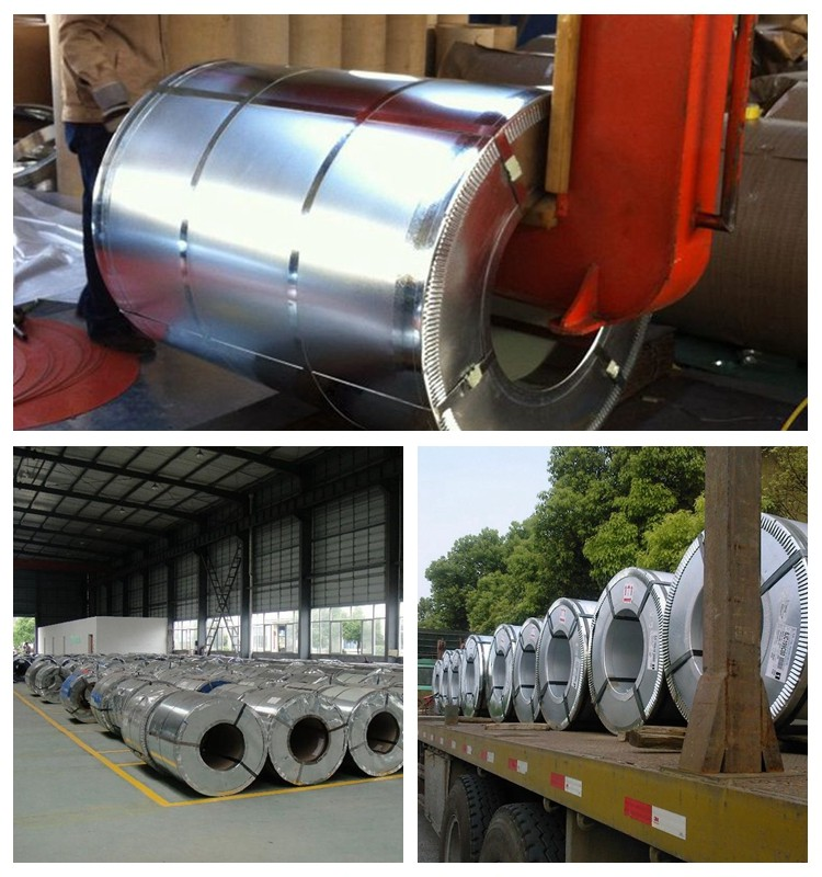 Prepainted Galvanized Steel Coil/ Cold Rolled Galvanised Steel Coil