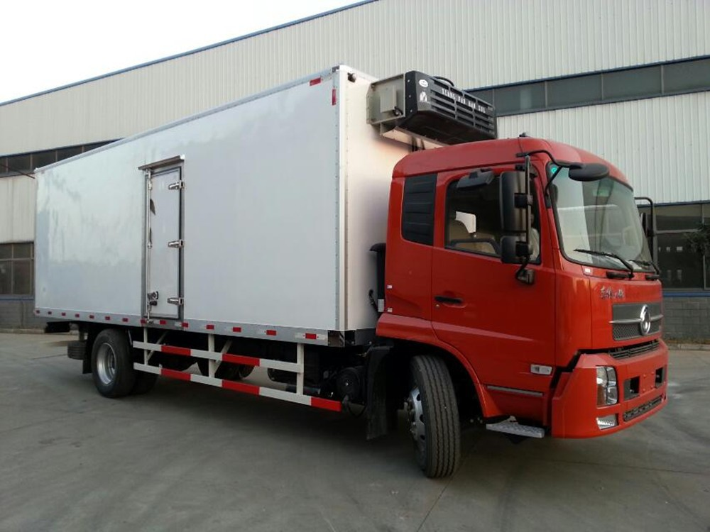 refrigerator freezer truck capacity 9 tons, 210 hp,LHD and RHD