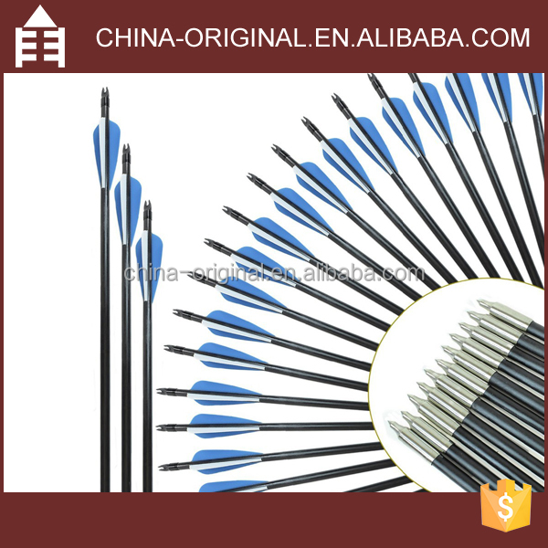 Outdoors Hunting 30 Inches Archery Carbon Arrows with Field Points Replaceable Tips